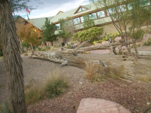 Native Landscaping at Bass Pro Shop