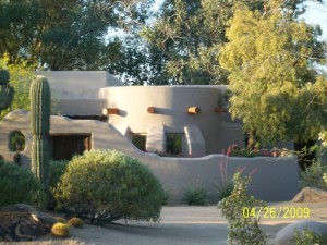 Using Trees in Phoenix Xeriscapes