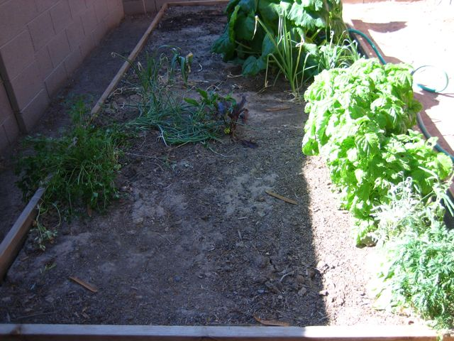 spent garden