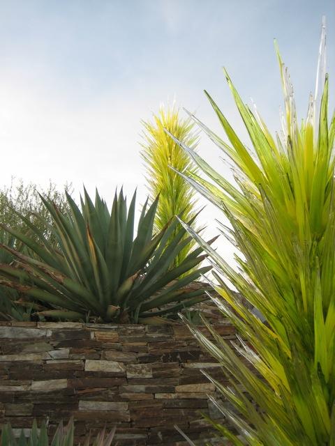 Dale Chihuly sculptures at Desert Botanical Garden