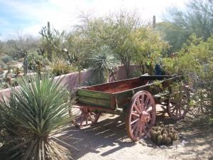 Wallace Desert Gardens